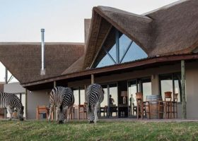 JBay Zebra Lodge – Thornhill